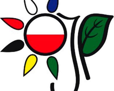 Курс «Польский язык для начинающих»